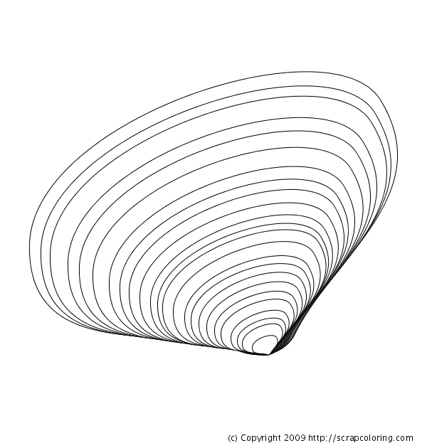 Clam Shells Drawing Clam shell coloring page
