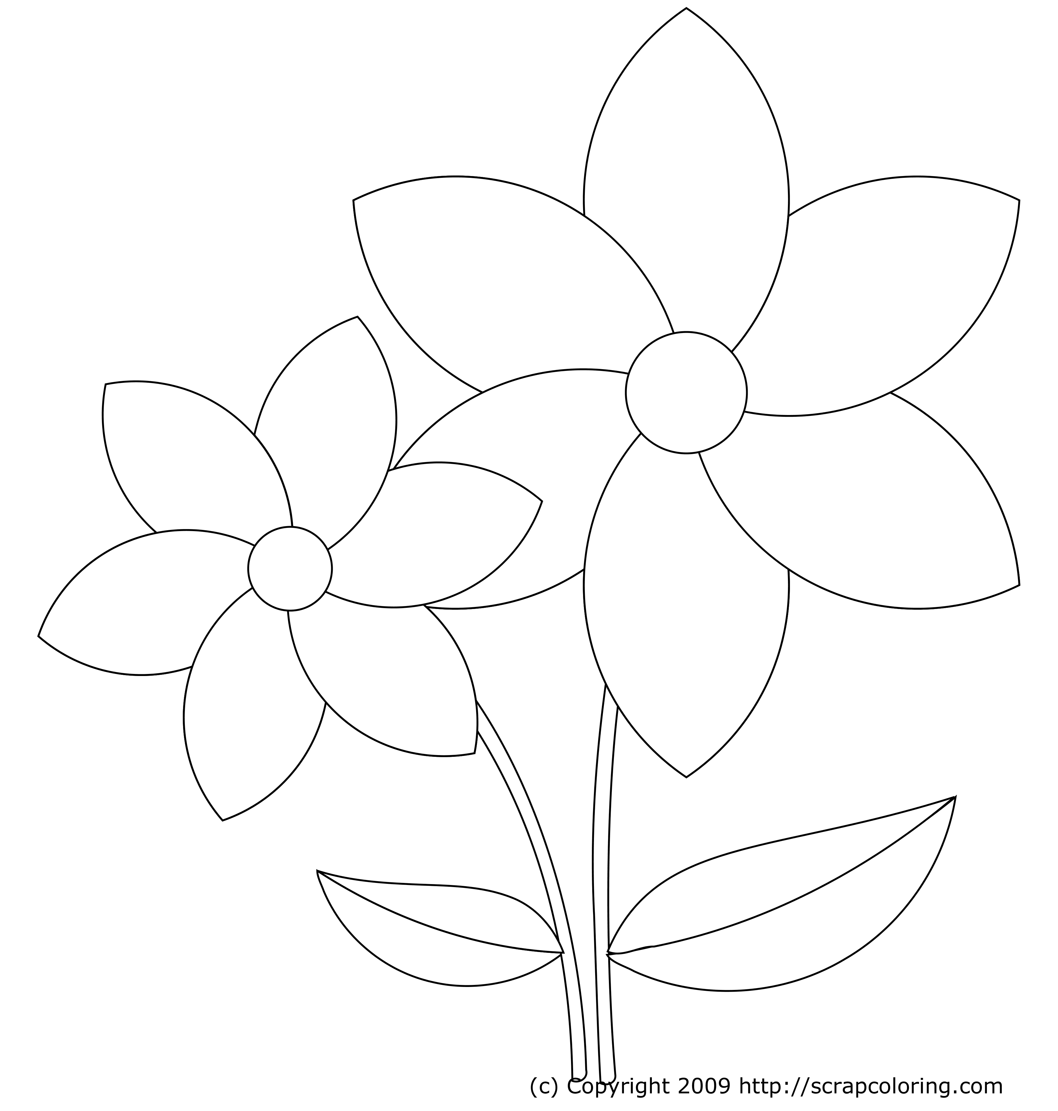 coloring pages flower petals - photo#33
