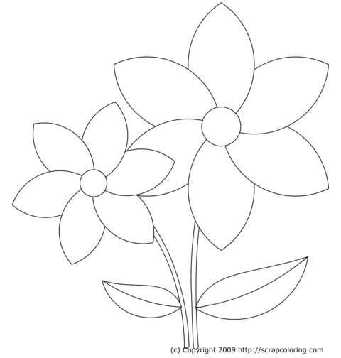 yellow rose coloring pages - photo #30