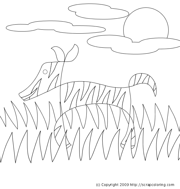 zebra coloring pages without stripes - photo #50