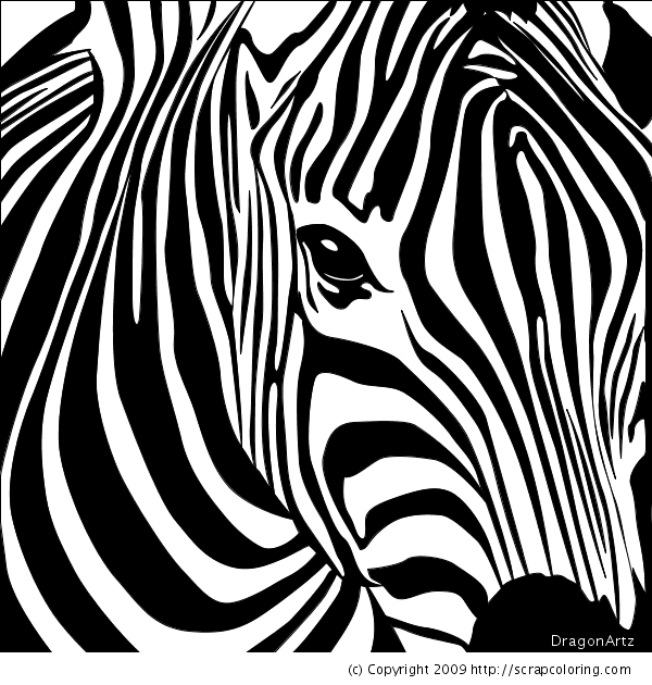 Zebra headZebra Head Coloring Pages